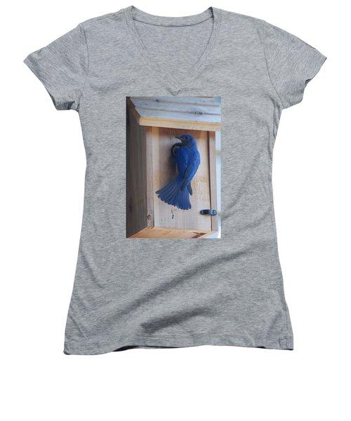 Bluebird Of Happiness Women's V-Neck