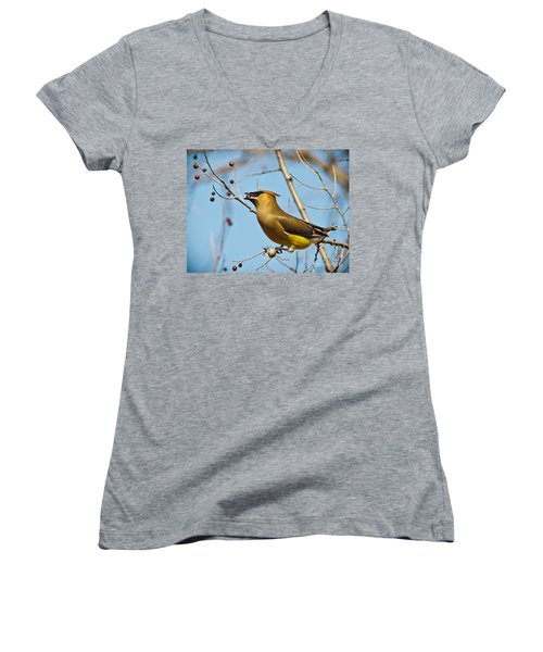 Cedar Waxwing With Berry Women's V-Neck T-Shirt