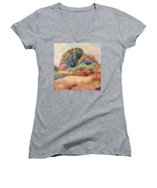 Henry's Backyard Women's V-Neck T-Shirt (Junior Cut) by Patricia Piffath