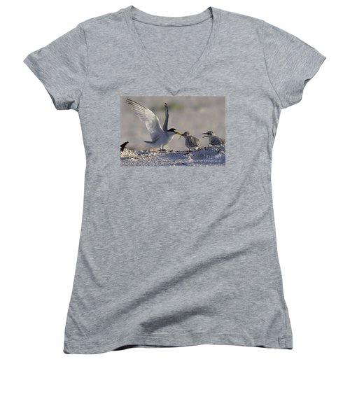 Least Tern Feeding It's Young Women's V-Neck T-Shirt