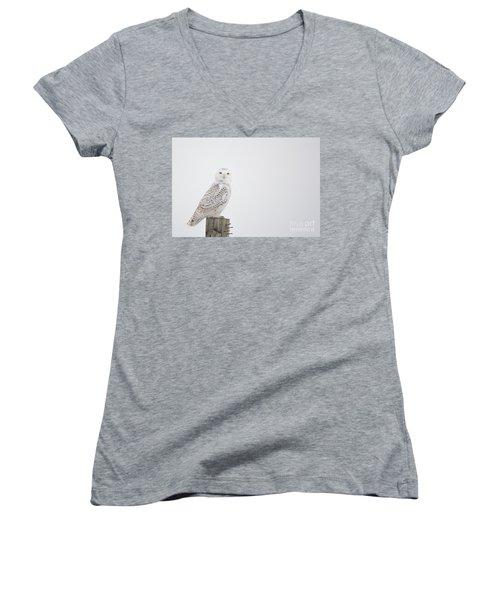 Observant Women's V-Neck T-Shirt (Junior Cut) by Cheryl Baxter
