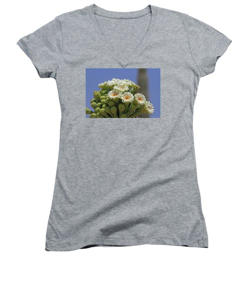 Saguaro Flower And Buds  Women's V-Neck T-Shirt