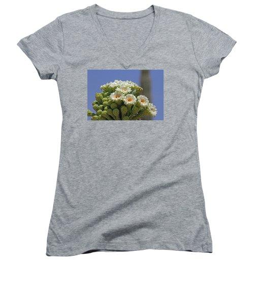 Saguaro Flower And Buds  Women's V-Neck T-Shirt (Junior Cut) by Tom Janca