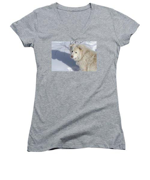 Snowy Nose Women's V-Neck T-Shirt (Junior Cut) by Fiona Kennard