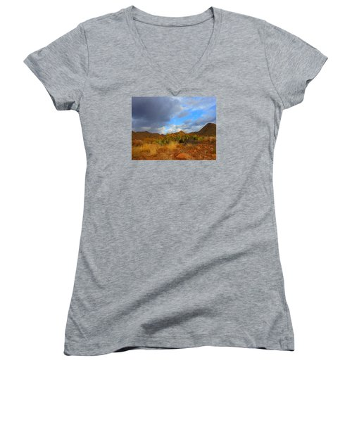 Springtime In Arizona Women's V-Neck T-Shirt