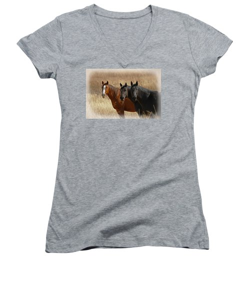 Three Horses Women's V-Neck T-Shirt