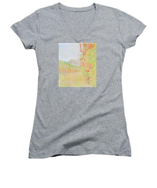 California Vineyard Women's V-Neck T-Shirt