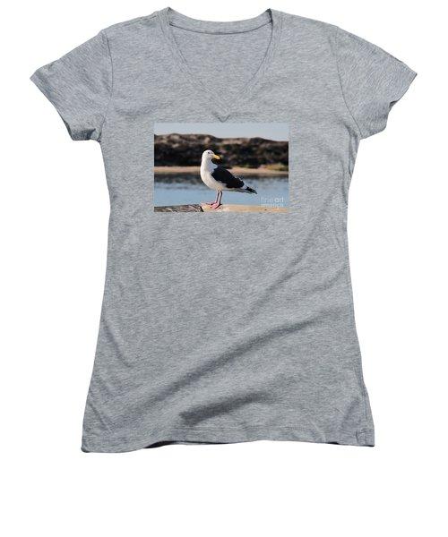 Western Gull At Moss Landing Inlet Women's V-Neck T-Shirt (Junior Cut) by Susan Wiedmann