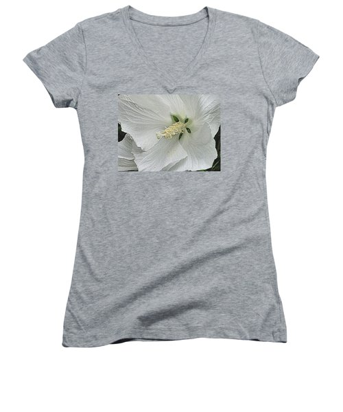 White Hibiscus Women's V-Neck