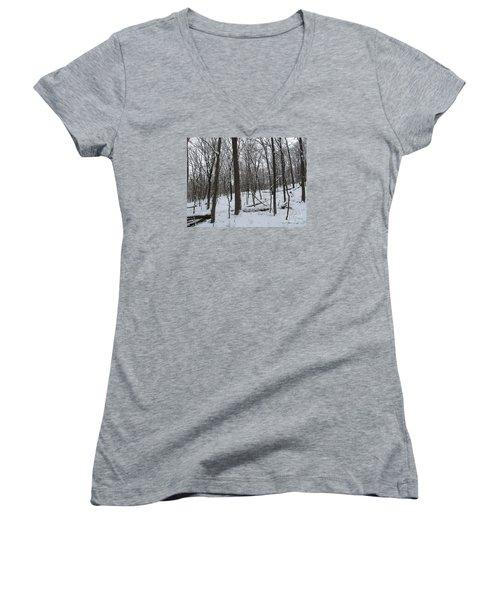 Winter Solitude Women's V-Neck T-Shirt
