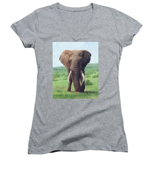 African Elephant Women's V-Neck T-Shirt