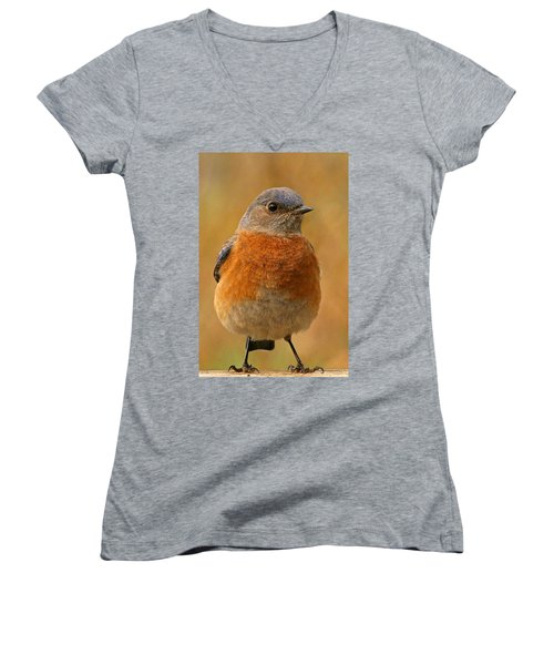 Bluebird Women's V-Neck T-Shirt (Junior Cut) by Jean Noren