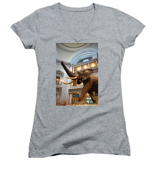 Bull Elephant In Natural History Rotunda Women's V-Neck (Athletic Fit)