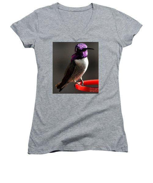 Women's V-Neck T-Shirt (Junior Cut) featuring the photograph Male Costa's On Perch by Jay Milo