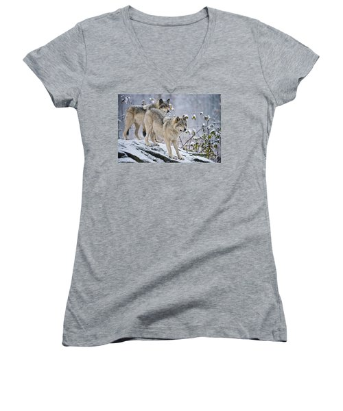 Timber Wolves Women's V-Neck (Athletic Fit)
