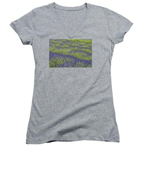 Lavendar Field Rows Of White And Purple Flowers Women's V-Neck T-Shirt