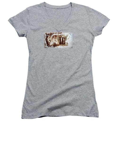 Women's V-Neck T-Shirt (Junior Cut) featuring the photograph Anton Chekhov's Seagull by Danica Radman