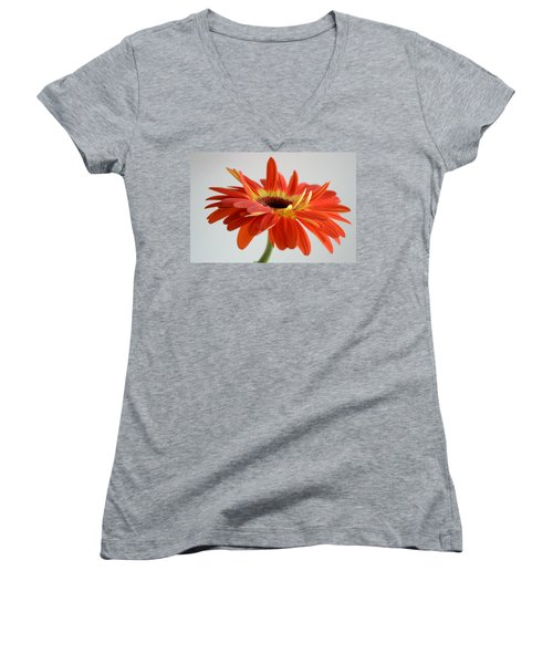A Beautiful Dream Women's V-Neck T-Shirt (Junior Cut) by Melanie Moraga