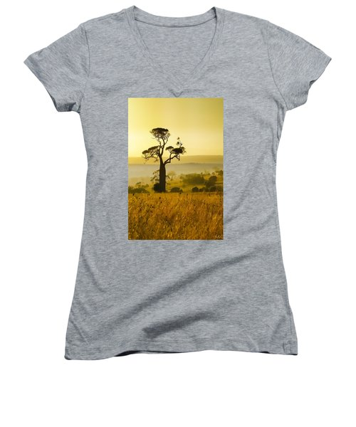 A Boab Sunrise Women's V-Neck T-Shirt (Junior Cut) by Holly Kempe