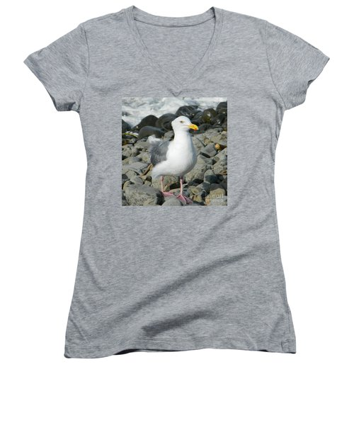 Women's V-Neck T-Shirt (Junior Cut) featuring the photograph A Curious Seagull by Chalet Roome-Rigdon