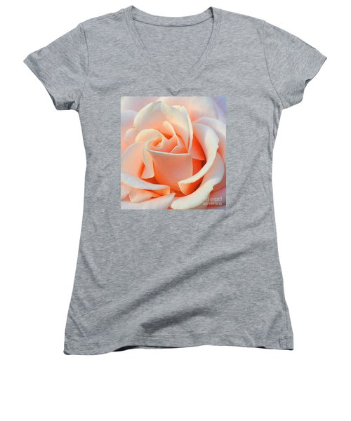 A Delicate Rose Women's V-Neck T-Shirt (Junior Cut) by Cindy Manero