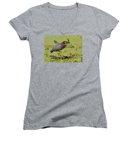 Women's V-Neck T-Shirt (Junior Cut) featuring the photograph A Greenbacked Heron's Breakfast by Kathy Baccari