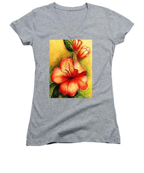 A Harbinger Of Springtime Women's V-Neck T-Shirt