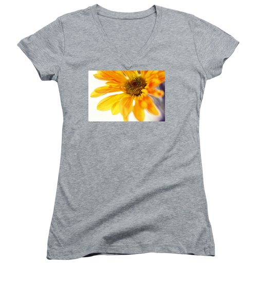 A Little Bit Sun In The Cold Time Women's V-Neck