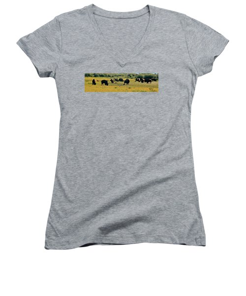 A New Beginning Grand Teton National Park Women's V-Neck T-Shirt (Junior Cut) by Ed  Riche