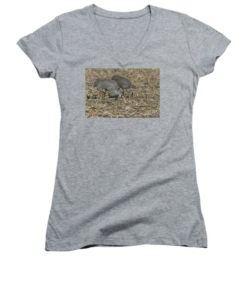 A Pair Of Sandhill Cranes Women's V-Neck T-Shirt