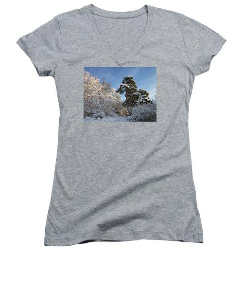 A Perfect Winterday Women's V-Neck T-Shirt