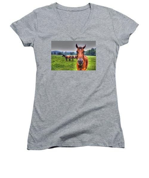 A Starring Horse Women's V-Neck T-Shirt (Junior Cut) by Jonny D