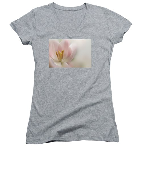 A Touch Of Pink Women's V-Neck