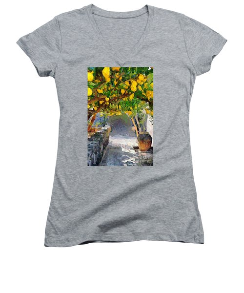 A Voult Of Lemons Women's V-Neck T-Shirt