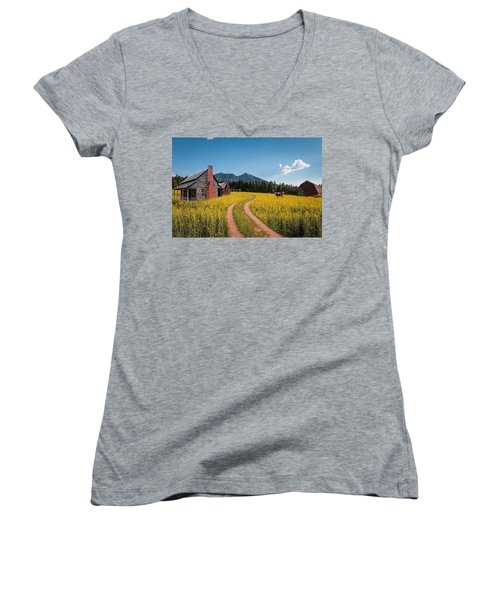 Abandoned Country Life Women's V-Neck (Athletic Fit)