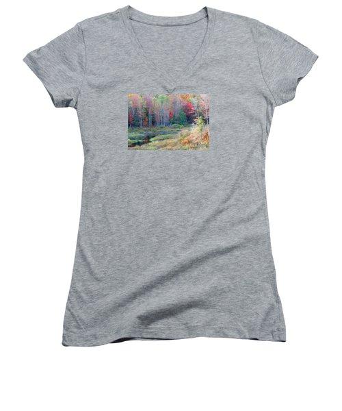 Adirondack Fall Women's V-Neck T-Shirt
