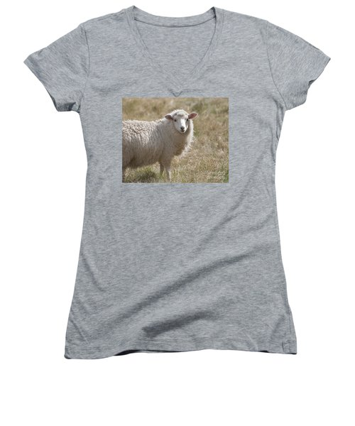 Adorable Sheep Women's V-Neck T-Shirt