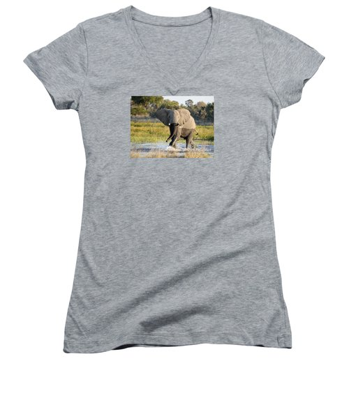 Women's V-Neck T-Shirt (Junior Cut) featuring the photograph African Elephant Mock-charging by Liz Leyden