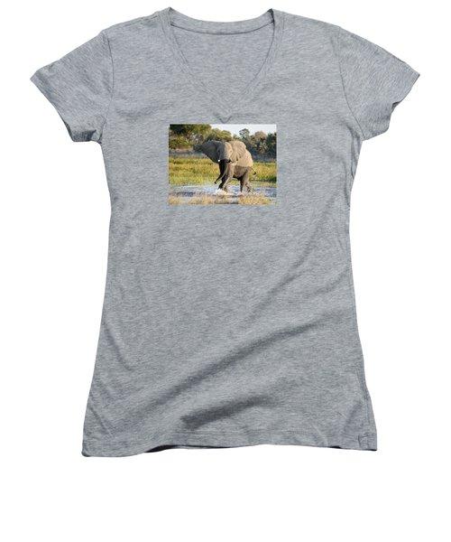African Elephant Mock-charging Women's V-Neck