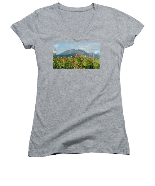 Alaska Flowers In September Women's V-Neck T-Shirt (Junior Cut) by Denyse Duhaime