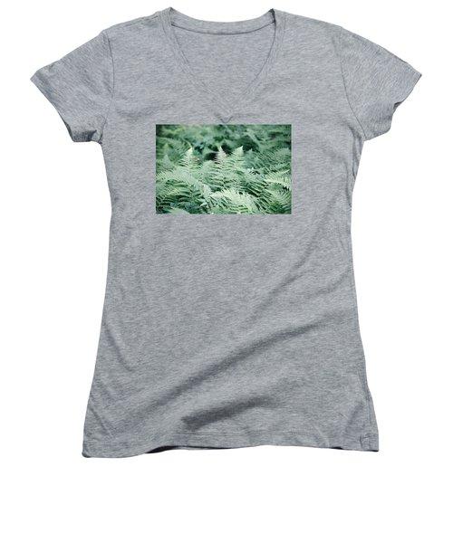 Women's V-Neck T-Shirt (Junior Cut) featuring the photograph Algonquin Ferns by David Porteus