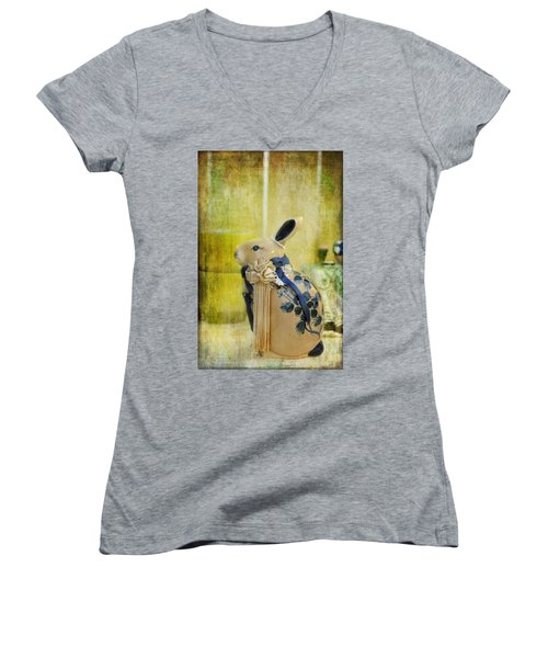 Women's V-Neck T-Shirt (Junior Cut) featuring the photograph All Dressed Up by Jan Amiss Photography
