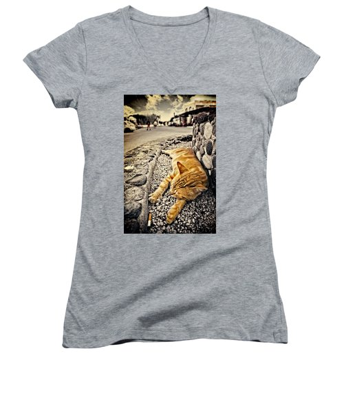 Alley Cat Siesta In Grunge Women's V-Neck T-Shirt (Junior Cut) by Meirion Matthias