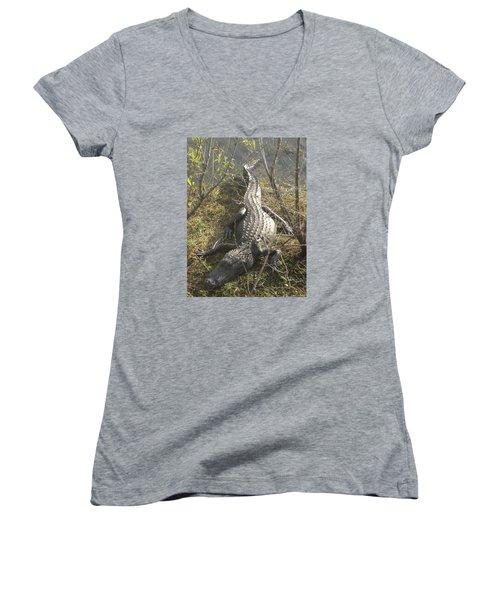 Women's V-Neck T-Shirt (Junior Cut) featuring the photograph Alligator by Robert Nickologianis