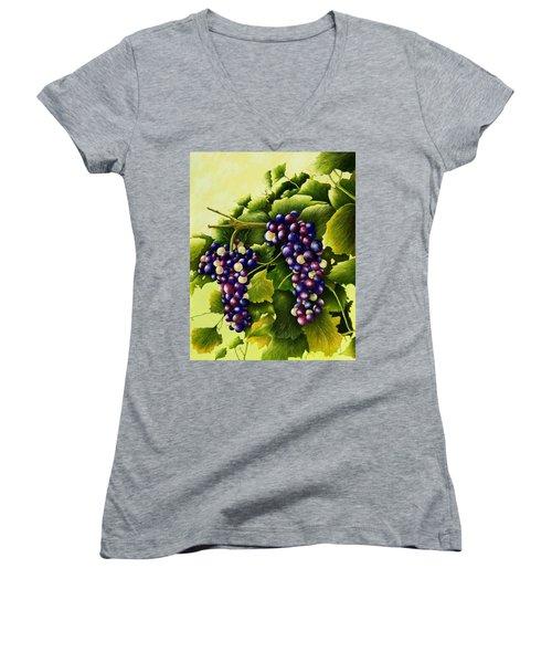 Almost Harvest Time Women's V-Neck T-Shirt