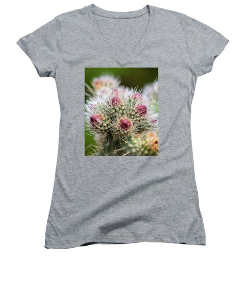 Women's V-Neck T-Shirt (Junior Cut) featuring the photograph Almost by Tammy Espino