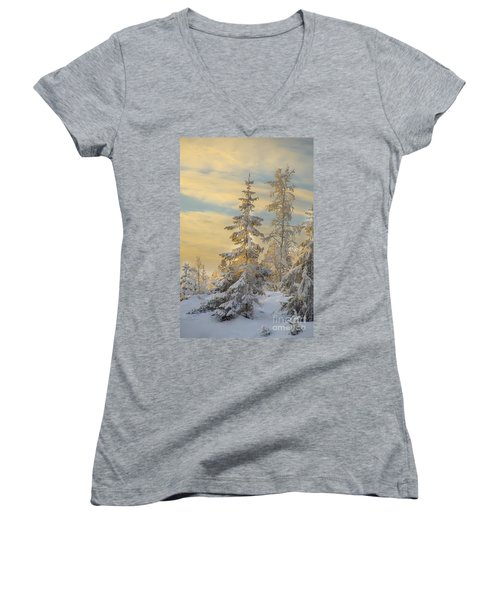 Women's V-Neck T-Shirt (Junior Cut) featuring the photograph Alone But Strong by Rose-Maries Pictures