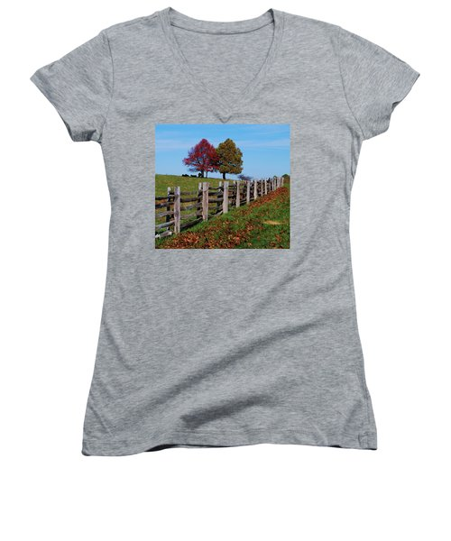 Along The Fence Women's V-Neck T-Shirt (Junior Cut) by Eric Liller