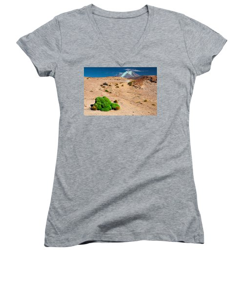 Altiplano Landscape Women's V-Neck T-Shirt
