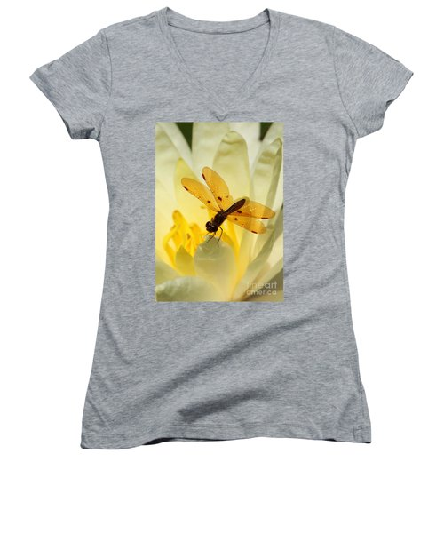 Amber Dragonfly Dancer Women's V-Neck T-Shirt